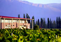 Tapiz Winery - Lujan de Cuyo Wineries Mendoza