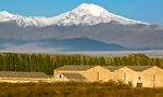 Bodega Atamisque - Best Wineries of Argentina - Vineyards Argentina - Wine Tourism Argentina